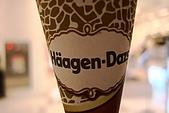 Häagen-Dazs哈根達斯冰淇淋:2009-0215-002.JPG