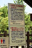 2010京阪神奈之旅奈良東大寺:2010-0830-1-010.JPG