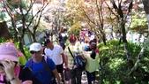 1080714太平山健行步道:P_20190714_101000_vHDR_Auto.jpg