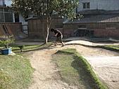 2011車場相片:2011.02.27 001.jpg