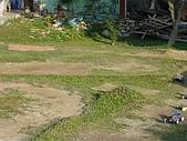 20071110:照片 019.jpg