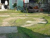 20071110:照片 014.jpg