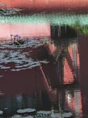 植物園及水塘: