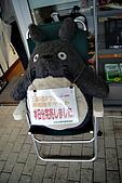 10.12搭乘龍貓公車:DSC00344.JPG