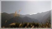 2015元旦連假‧新竹尖石‧竹東‧內灣‧新光‧鎮西堡‧神木區:神木-76.jpg
