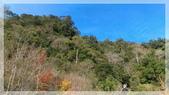2015元旦連假‧新竹尖石‧竹東‧內灣‧新光‧鎮西堡‧神木區:神木-3.jpg