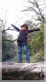 2015元旦連假‧新竹尖石‧竹東‧內灣‧新光‧鎮西堡‧神木區:神木-32.jpg