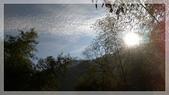 2015元旦連假‧新竹尖石‧竹東‧內灣‧新光‧鎮西堡‧神木區:神木-4.jpg