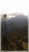 2015元旦連假‧新竹尖石‧竹東‧內灣‧新光‧鎮西堡‧神木區:新光鎮西堡-9.jpg