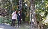 故宮-菊世無雙:IMAG0226.jpg