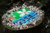 小粗坑賞桐-大山背賞螢搞笑一日遊:DPP_0014.JPG
