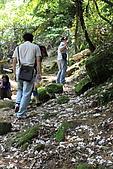 小粗坑賞桐-大山背賞螢搞笑一日遊:DPP_0025.JPG
