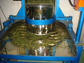 2011.6.6端午節午時茶採製:DSC09682.JPG