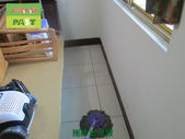 1024 住家客廳-廚房-臥室-高硬度磁磚防滑工程:1024 住家客廳-廚房-臥室-高硬度磁磚防滑工程 (16).JPG