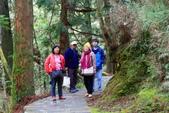 對高岳登山步道-- 阿里山走春:IMG_5261--S.jpg