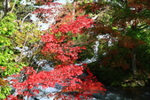 北海道 - 從釧路到阿寒:IMG_6627-.jpg