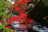 北海道 - 從釧路到阿寒:IMG_0004-.jpg
