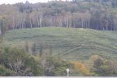北海道 - 從千歲到釧路:IMG_6132.JPG