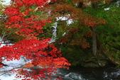 北海道 - 從釧路到阿寒:IMG_0021-.jpg