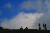 綠野香坡 - 擎天崗花訊:IMG_5659.JPG