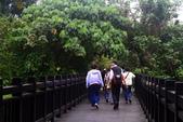 同學 - 四月春草綠:關渡自然公園,好久沒來了。 IMG_6474-.jpg