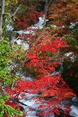 北海道 - 從釧路到阿寒:IMG_0014-.jpg