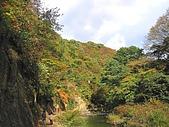 鳴子峽賞楓自助遊: