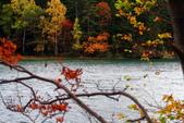 北海道 - 從釧路到阿寒:IMG_0046-.jpg