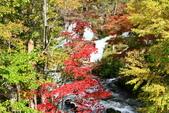 北海道 - 從釧路到阿寒:IMG_6631-5180x3453.jpg