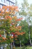 北海道 - 從釧路到阿寒:IMG_0118-5180.jpg