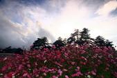秋天的故事 - 福壽山:IMG_0243.jpg
