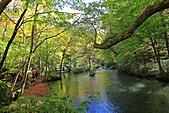 奧入瀨溪流: