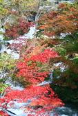北海道 - 從釧路到阿寒:IMG_0015-.jpg