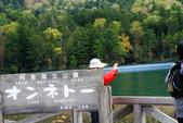 北海道 - 從釧路到阿寒:IMG_0087-.jpg