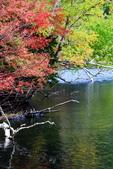 北海道 - 從釧路到阿寒:IMG_0091-.jpg
