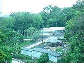 新北投溫泉,地熱谷:P1050526.JPG