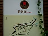 新北投溫泉,地熱谷:P1050536.JPG