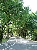 100904-南港公園:100904-南港公園-0148.JPG