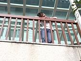 花蓮南橫栗松溫泉竹田2006/12/27-2007:IMGP0861.jpg