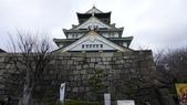 2018日本大阪城:_DSC0370.JPG