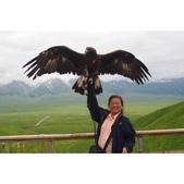 北疆之旅1040609-0618:相簿封面