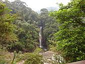 內洞森林遊樂區:DSC01119.JPG