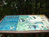 內洞森林遊樂區:DSC01127.JPG