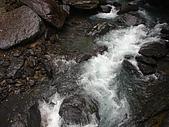 內洞森林遊樂區:DSC01154.JPG