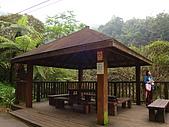 內洞森林遊樂區:DSC01121.JPG