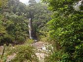 內洞森林遊樂區:DSC01125.JPG
