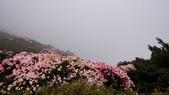 2012.5.19合歡山之旅: