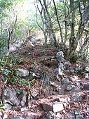 馬崙山 - 2009/12/27:IMG_3359.JPG