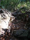 馬崙山 - 2009/12/27:IMG_3360.JPG