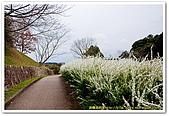 20090322奈良:飛鳥之高松塚古墳:DSC_1204_resize.jpg
